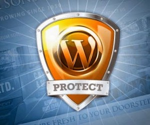 How to Secure/Protect Your WordPress Blog