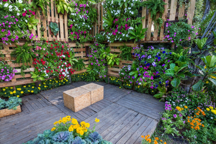 7 Creative Tips to Take Vertical Gardening to the Next Level